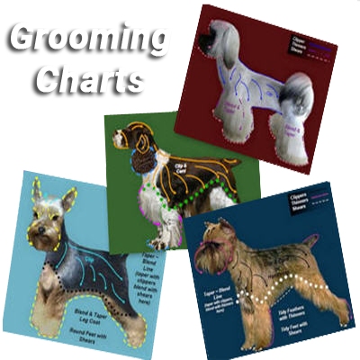 dog grooming chart collage